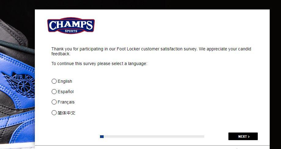 Champs Sports Survey